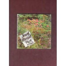Josef Hiršal : Píseň mládí